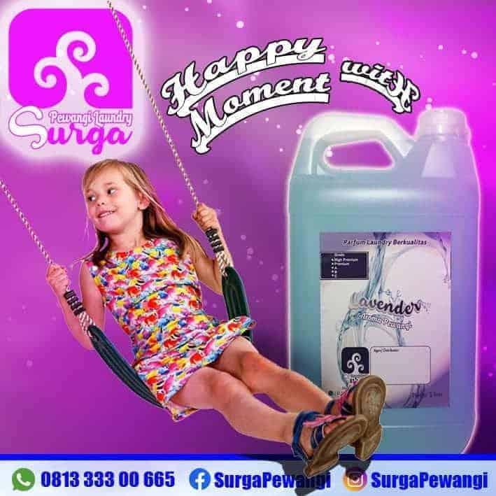 bibit parfum laundry terlaris lavender - Aroma Parfum Laundry Terlaris
