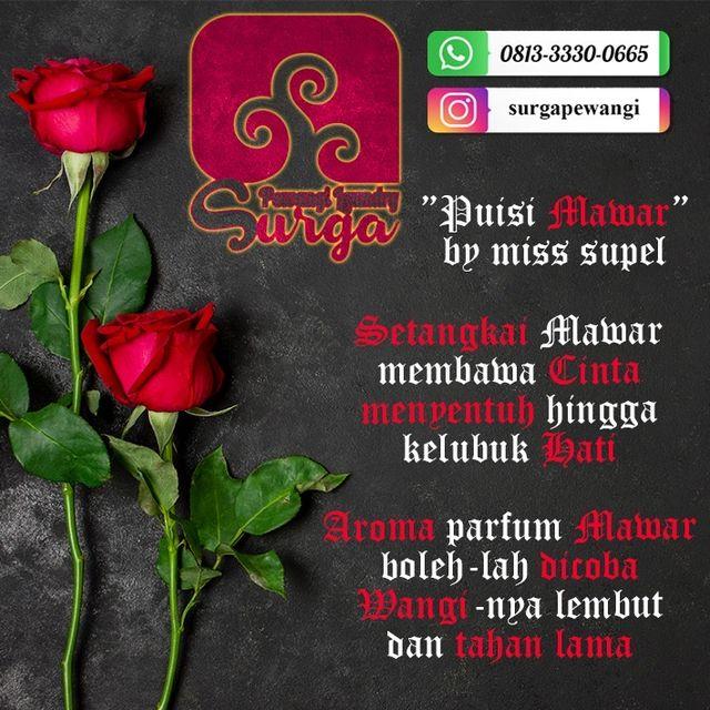 aroma pewangi mawar super laundry - Pewangi Laundry/Parfum Laundry | Agen, Distributor, Merk & Harga Jual