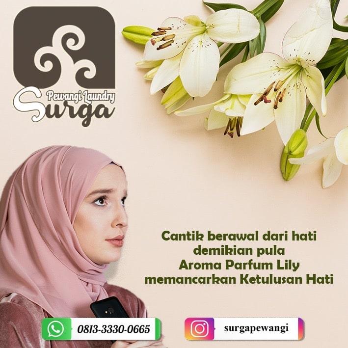 pewangi lily - Pewangi Laundry/Parfum Laundry | Agen, Distributor, Merk & Harga Jual