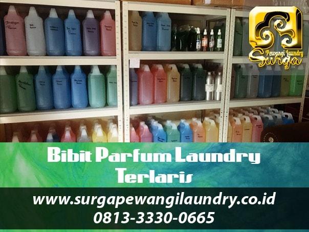 1 Bibit Parfum Laundry Terlaris - Bibit Parfum Laundry Jogja Jadi Usaha Tanpa Modal, Dropship