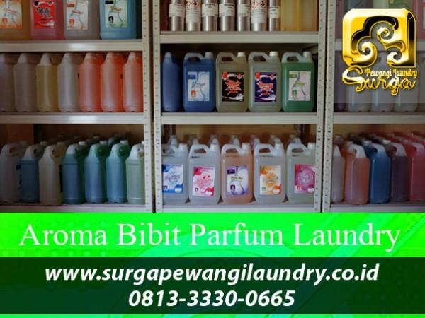 Bibit Parfum Laundry Terlaris