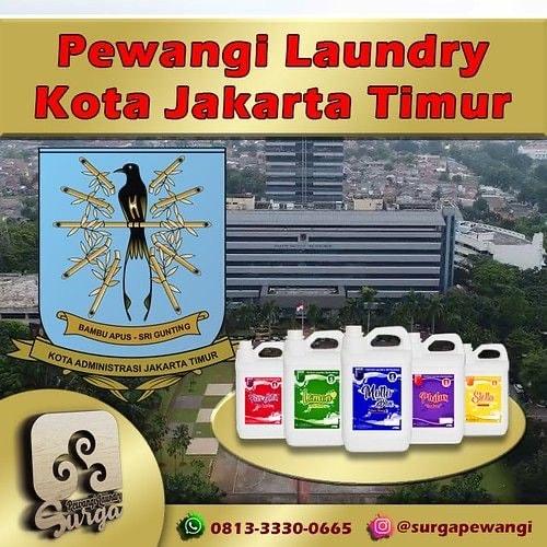 IMG 1541 - Pewangi Laundry Jakarta Pusat Terbaik Berkualitas & Murah
